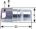 seriesrl-fnpt-12-plug